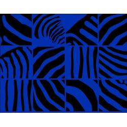 Papel Regalo Print Cebra Azulon-Negro